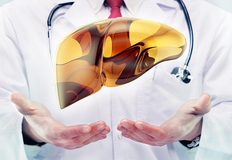лечение жирового гепатоза